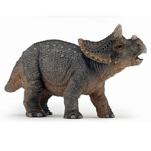 Triceratops, jong