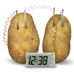 Green Science : Potato clock